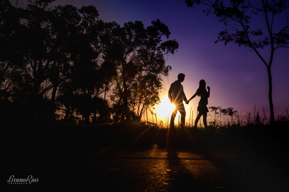 ensaio romântico brasilia - jardim botânico de brasília - fotografia de casamentos - por do sol - silhueta