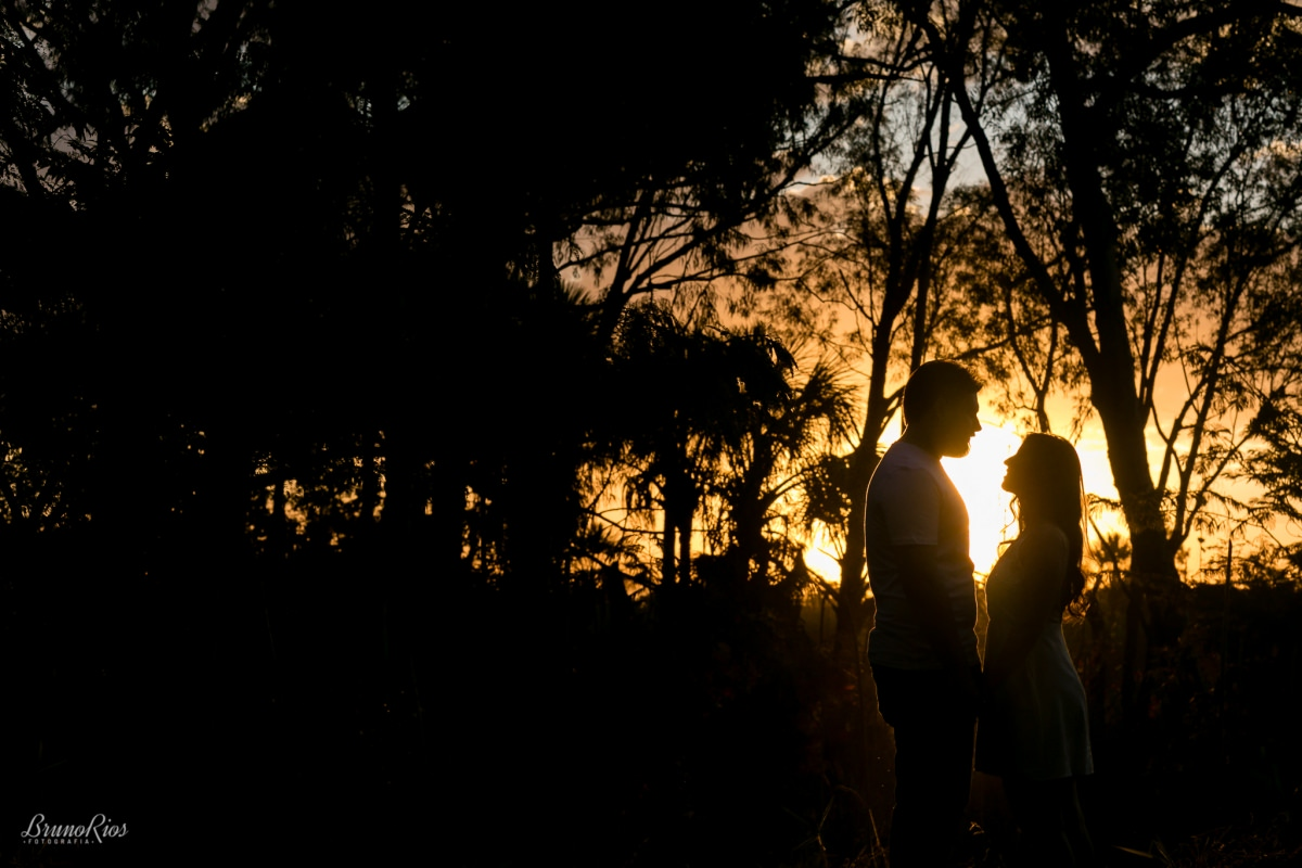 ensaio romântico pre wedding jardim botanico de brasilia noivos
